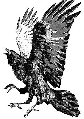 Yatagarasufolklorebird