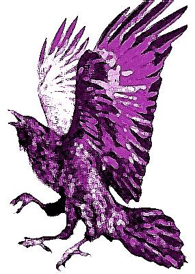Yatagarasufolklorebird_20200112144701